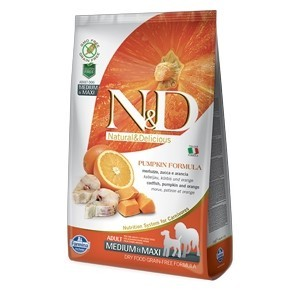 Crunchy Cracker alla Mela