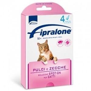 Fiproline Gatto