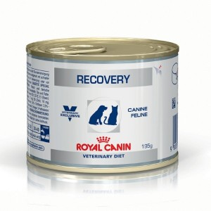 Veterinary Diet Recovery