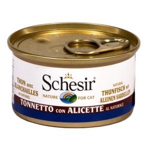 Tonnetto con Alicette al...