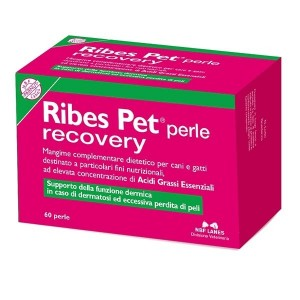 Ribes Pet Perle Recovery
