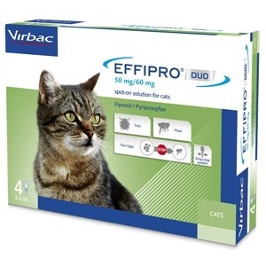 Effipro Duo Gatto