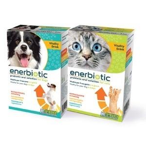 Enerbiotic