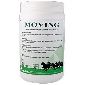 Moving Msm