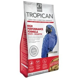 Hari Tropican High Performance