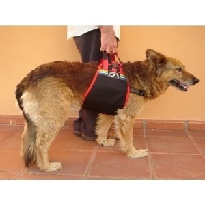 Fascia per Sollevare i Cani