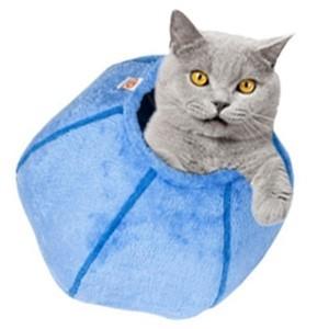 Cat Cave Azzurro